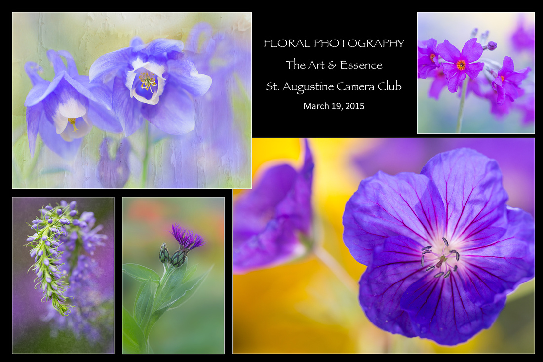 SACC Flower Talk Hold the Date March 2015