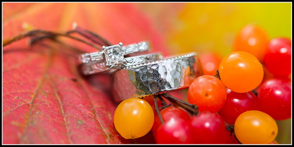 Wedding Rings & High Bush Cranberries